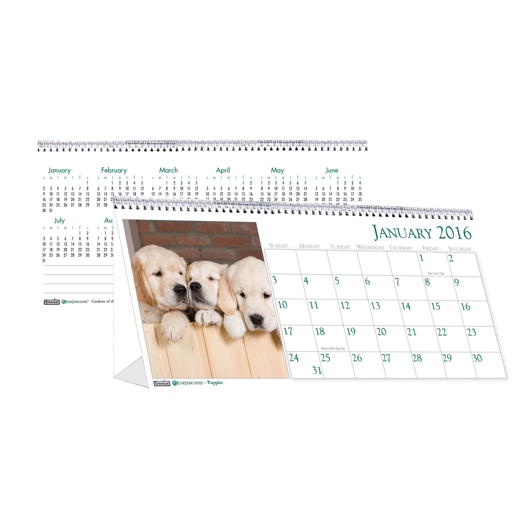 House of Doolittle Earthscapes Puppy Desk Top Tent Calendar